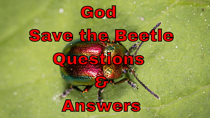 God Save the Beetle Questions & Answers