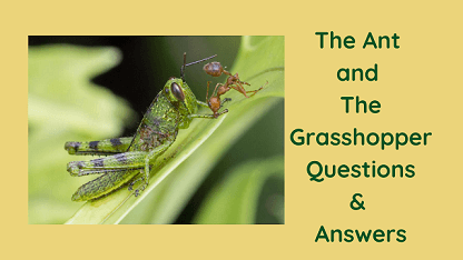 The Ant and The Grasshopper Questions & Answers