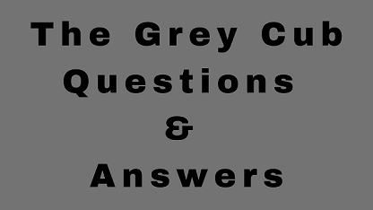 The Grey Cub Questions & Answers