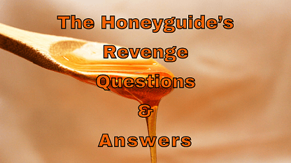 The Honeyguide's Revenge Questions & Answers