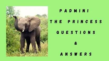 Padmini The Princess Questions & Answers