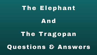 The Elephant And The Tragopan Questions & Answers
