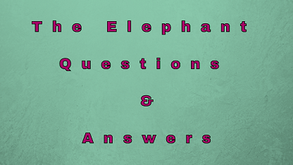 The Elephant Questions & Answers