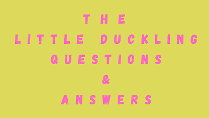 The Little Duckling Questions & Answers
