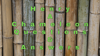 Henry A Chameleon Questions & Answers