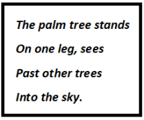 Palm Tree Questions & Answers