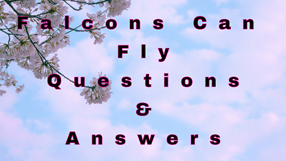 Falcons Can Fly Questions & Answers