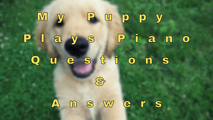 My Puppy Plays Piano Questions & Answers