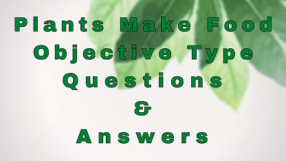 Plants Make Food Objective Type Questions & Answers