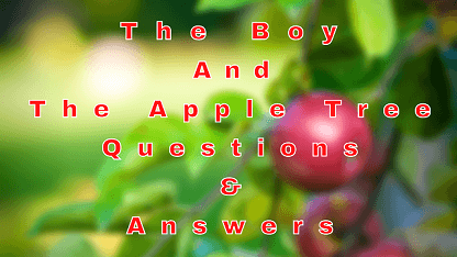 The Boy and The Apple Tree Questions & Answers