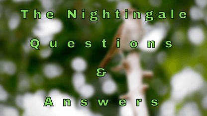 The Nightingale Questions & Answers