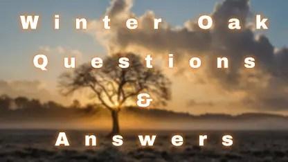 Winter Oak Questions & Answers