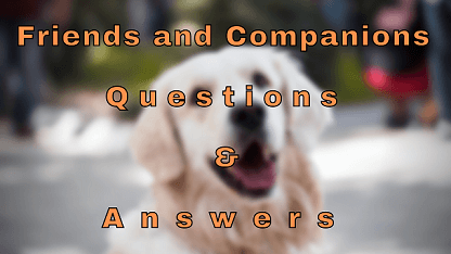 Friends and Companions Questions & Answers