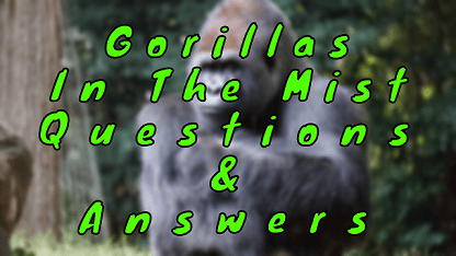 Gorillas in The Mist Questions & Answers