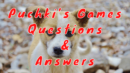 Puchki's Games Questions & Answers