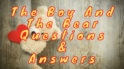 The Boy and The Bear Questions & Answers