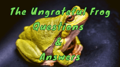 The Ungrateful Frog Questions & Answers