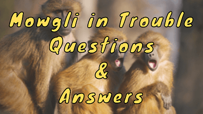Mowgli in Trouble Questions & Answers