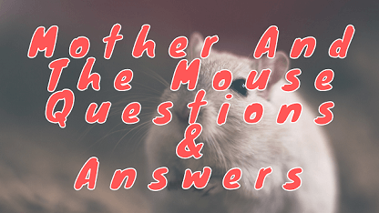 Mother And The Mouse Questions & Answers