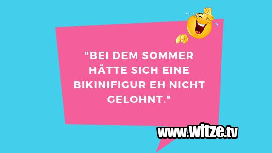 The Weekender Aussicht Auf Boho Sommer Lustige Schwimmtierchen