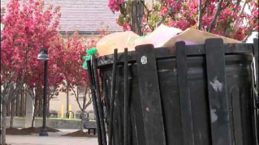 trash in Elmwood Village_267410