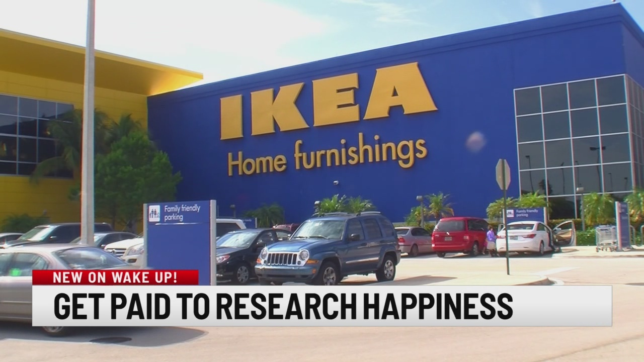 Get paid to research happiness