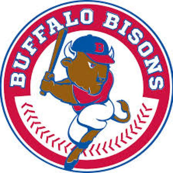 bisons logo_1559519492316.jpg.jpg