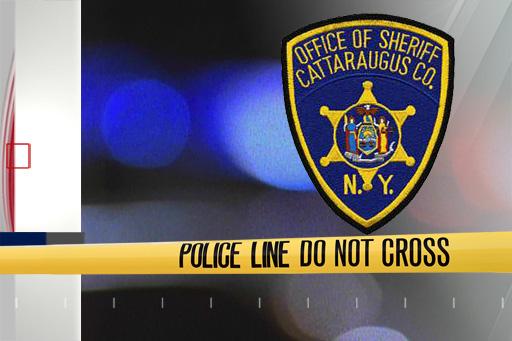 police cattaraugus county_1553617391452.jpg.jpg