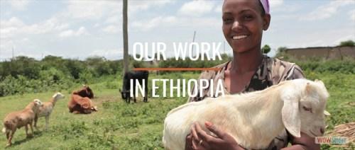 SHA Ethiopia