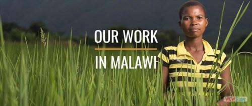 SHA Malawi