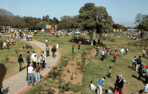 "A list of the most happening ""Things to do in Chandigarh"""