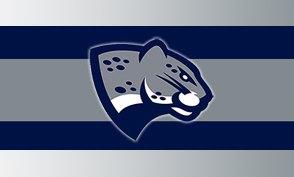 Augusta University- Jaguar Athletics logo_68127