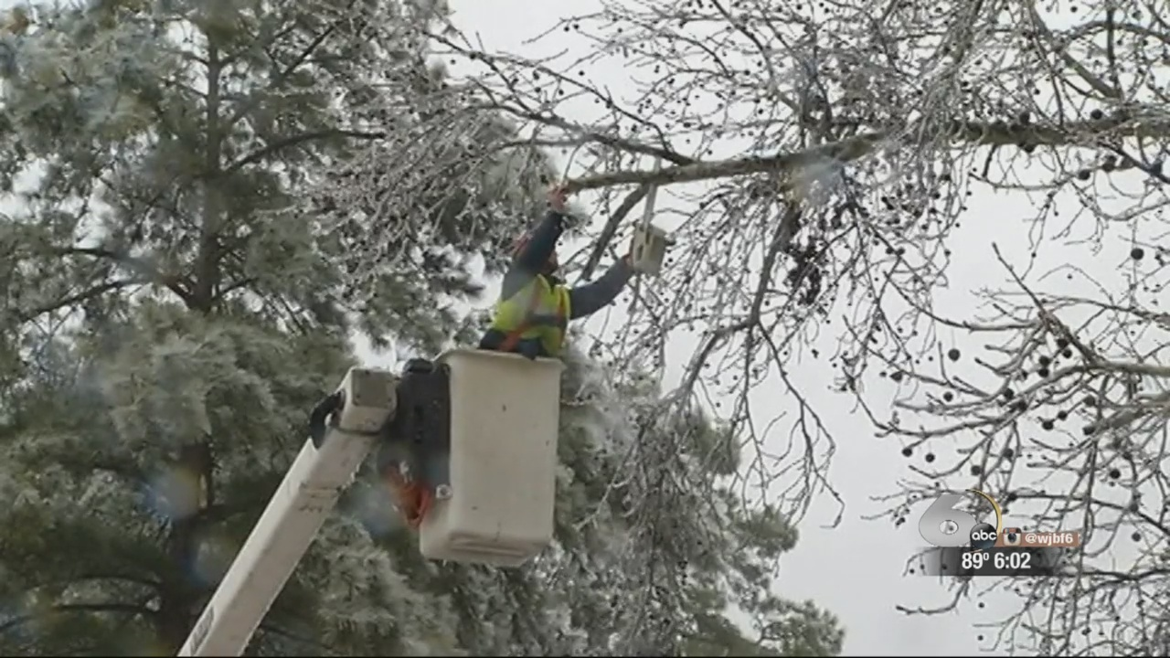 Ice Storm Cleanup_168571