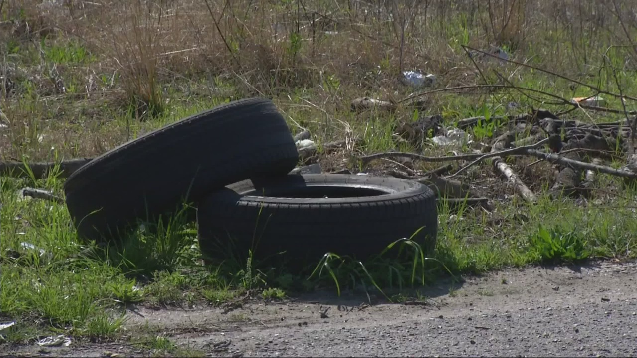 Committee says no new funding for comprehensive cleanup plan