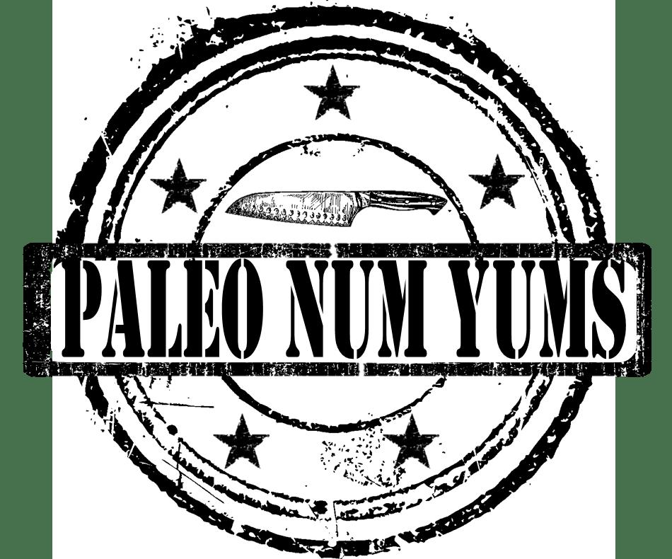 paleonumyums_logo1_369528