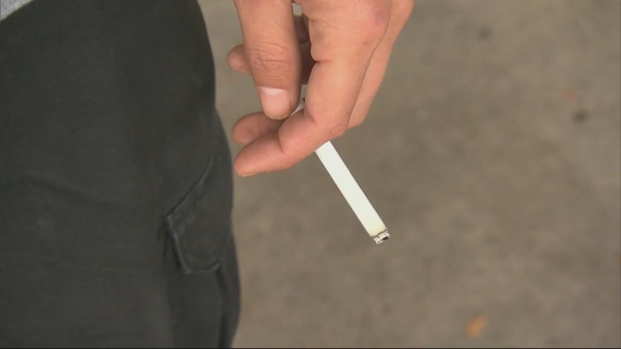 Smoke free policy_374467
