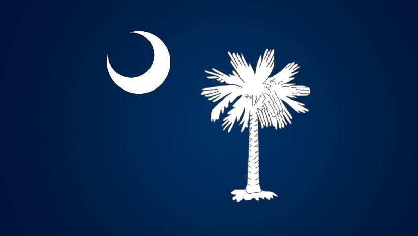 south carolina flag_334430
