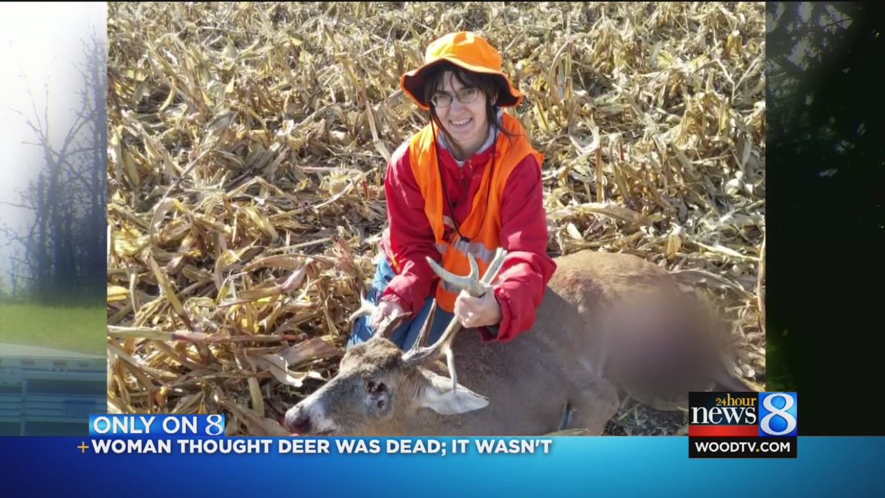 deer-attack_72633