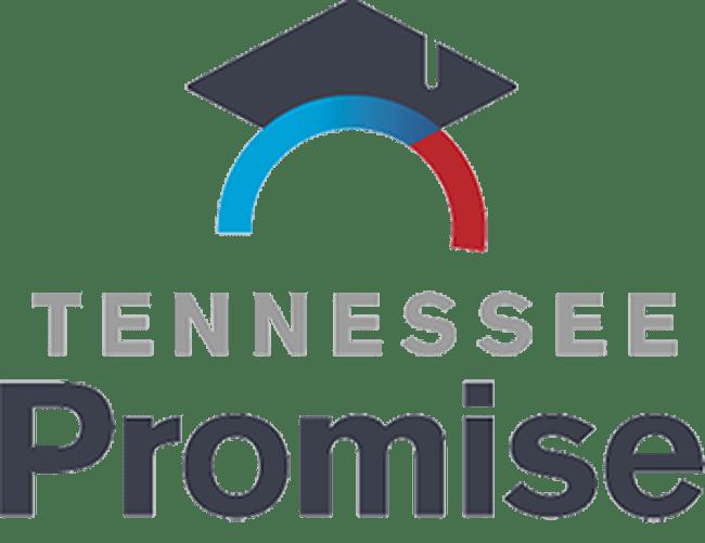 tnpromise-logo_379519