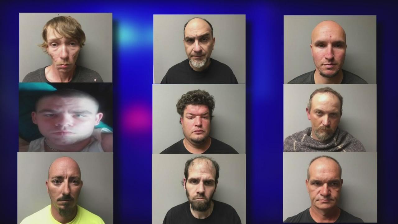 9 suspects_1517372586587.jpg.jpg