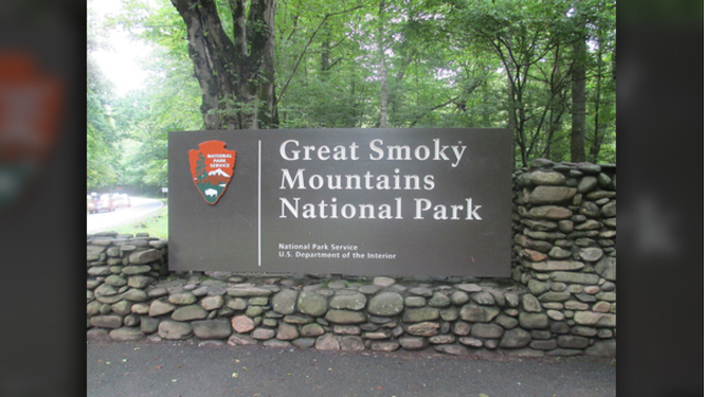 Missing man discovered dead in Smokies; bear euthanized after human DNA found