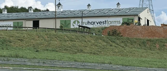 Drag racer opens one of Virginia's largest hemp farms along I-81