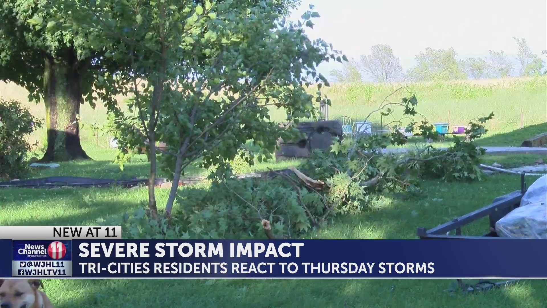 Severe storms leave heavy impact in Tri-Cities region