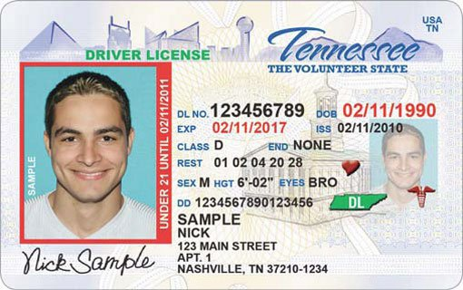 sample drivers license TN_88703