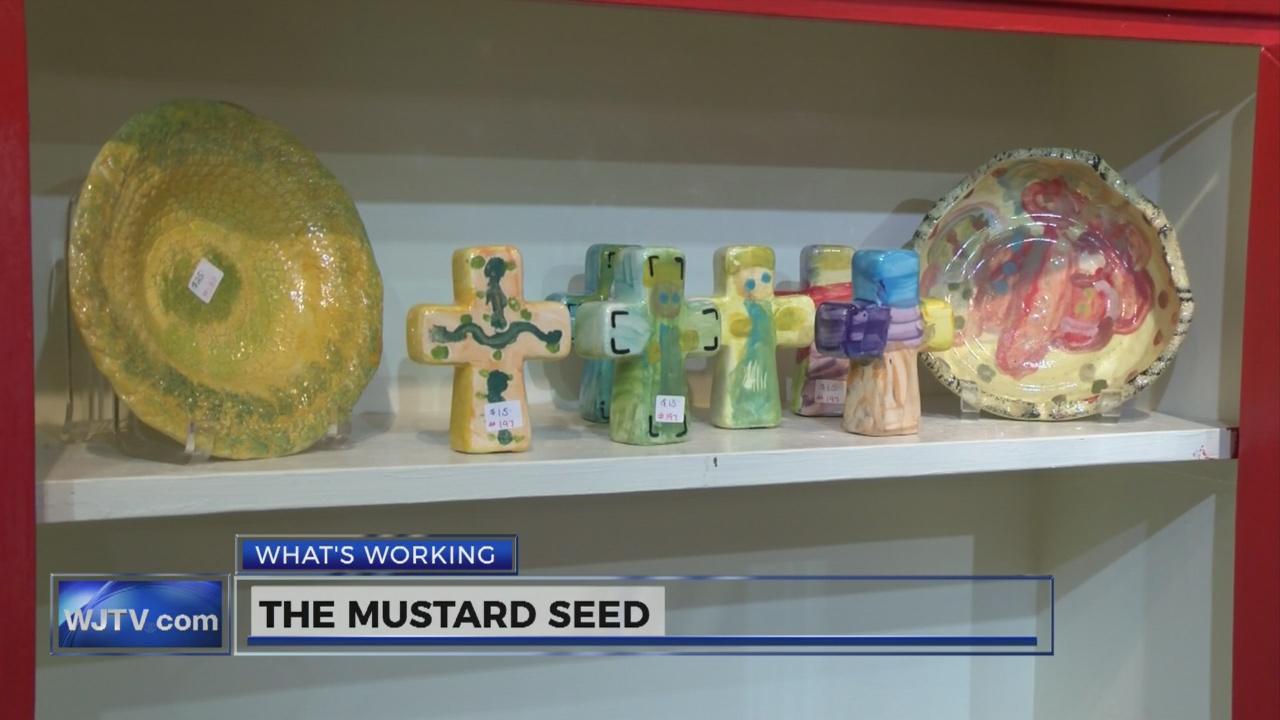 Mustard Seed_112022