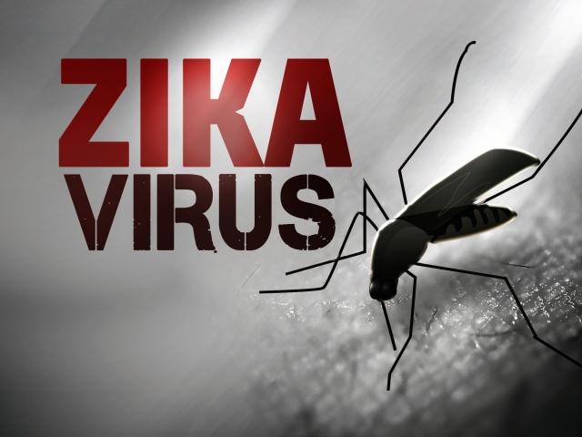 zika virus_132897