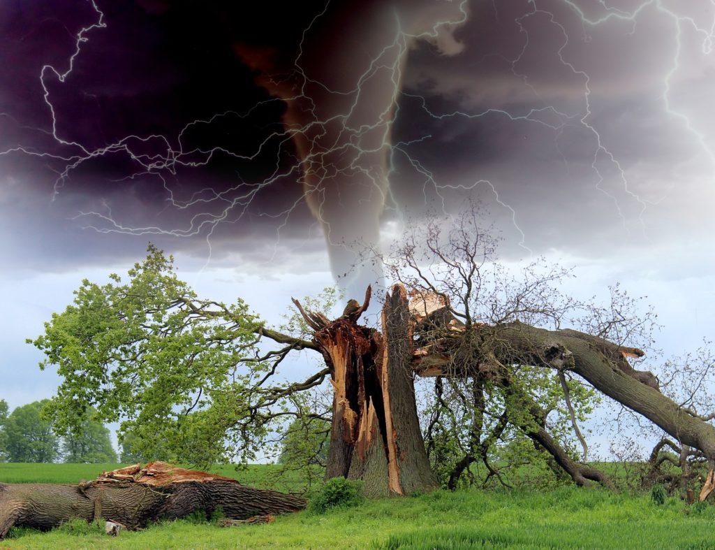 Torna_Knows_Tornado_Facts_1554826698488.jpg