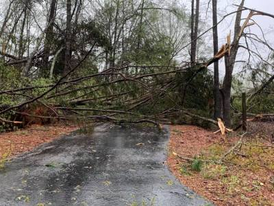 Damage in Calhoun, Monroe counties from severe weather