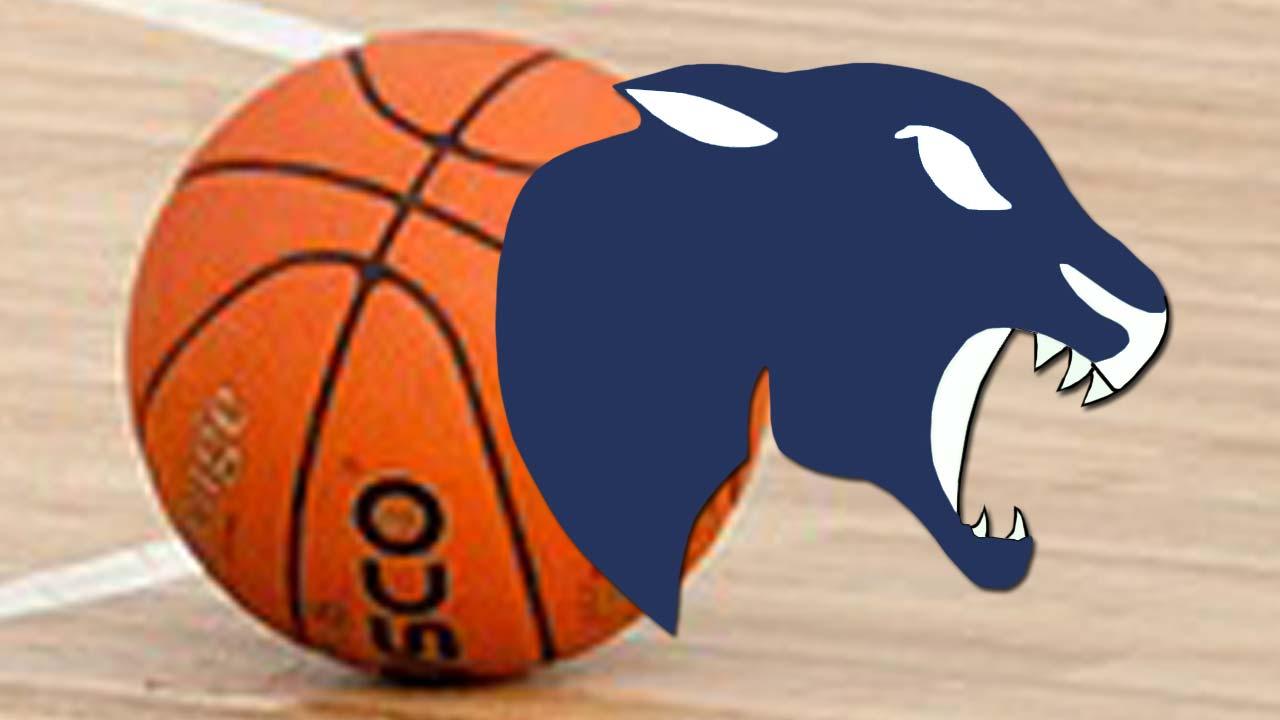 Bristol Panthers basketball