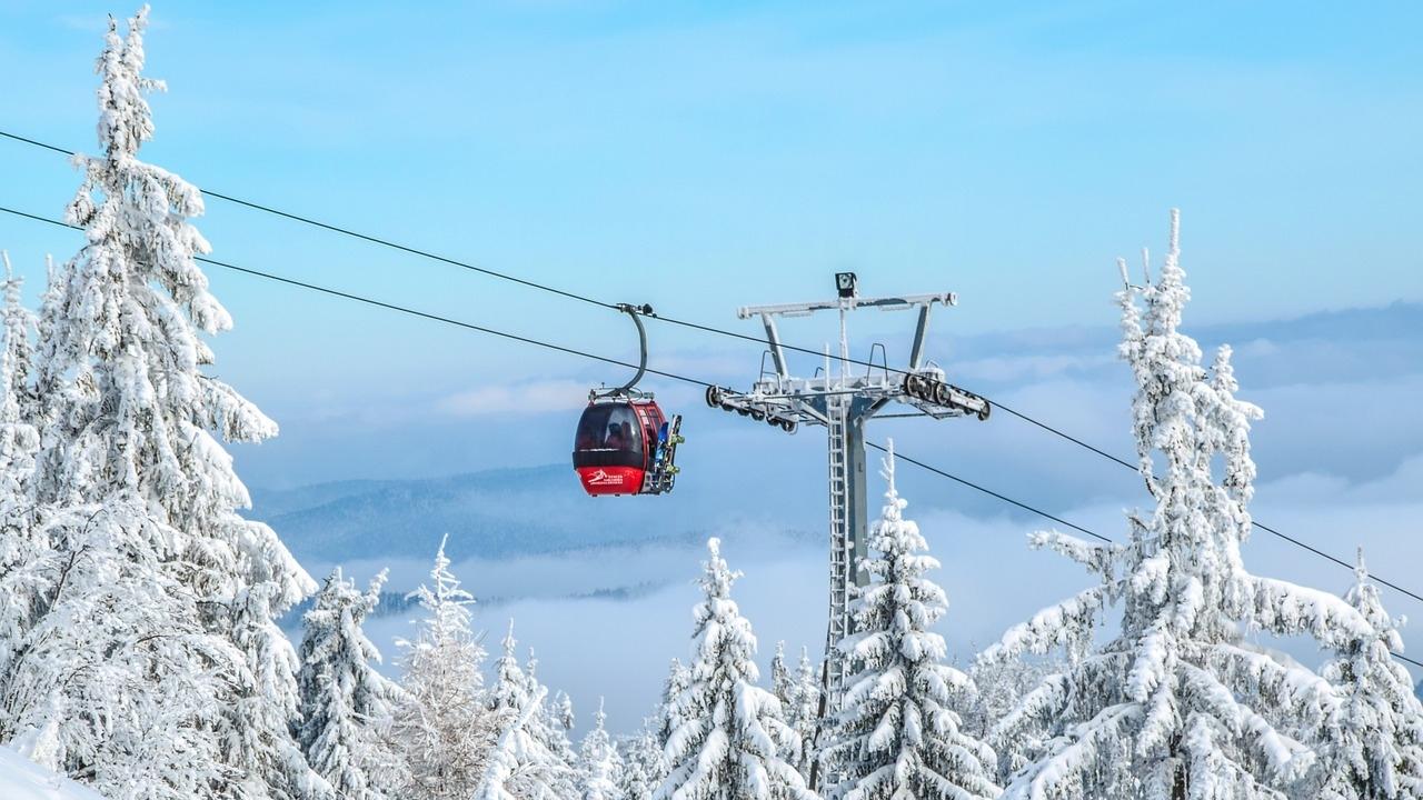 ski-_1554381022832.jpg